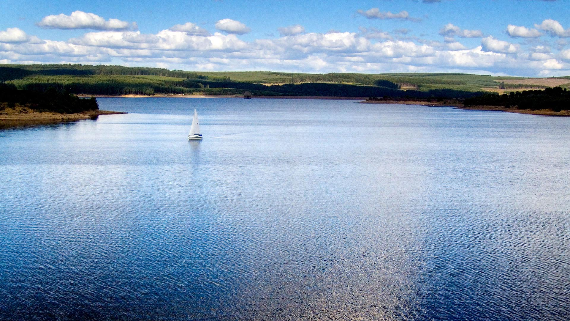 Kielder Water & Forest Park